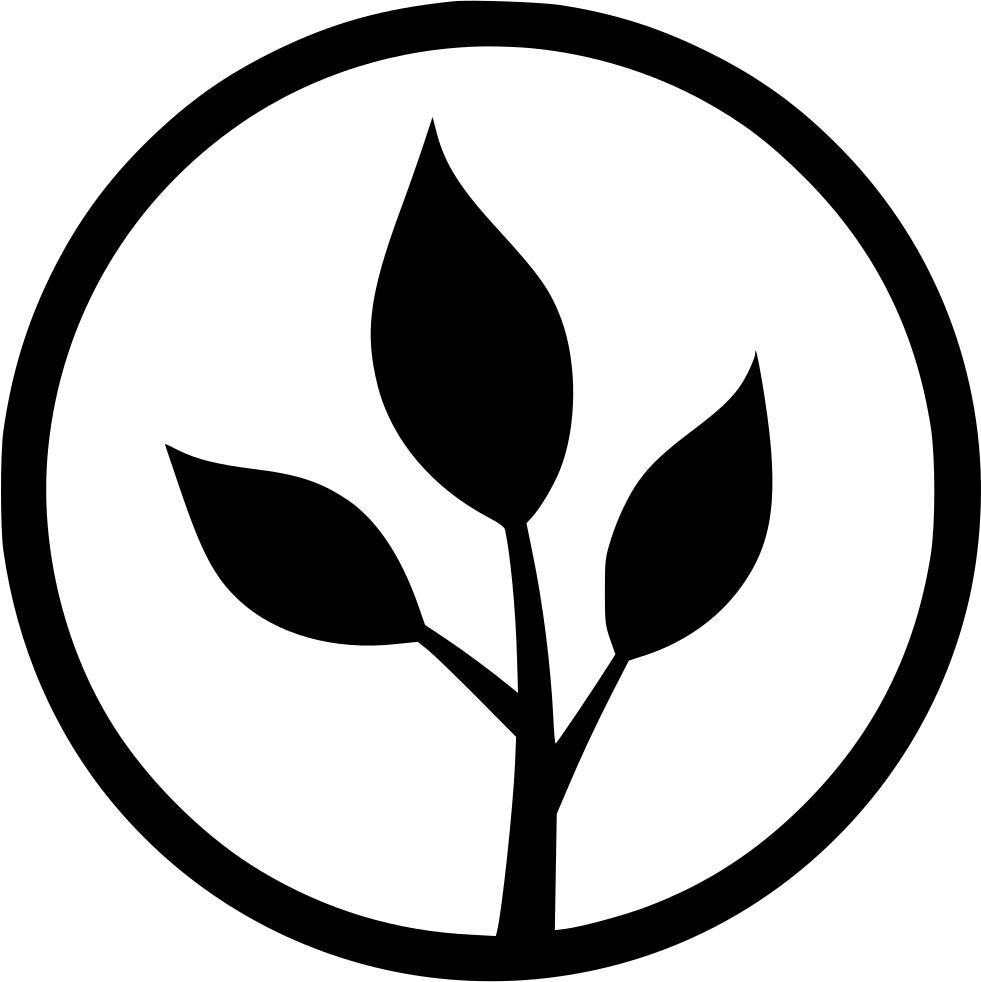 محصولات ارگانیک و سالم